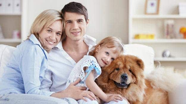 Wills & Trusts dog-young-family Direct Wills Woodford